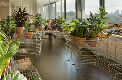Indoor Garden Design for the Government Building Agency
