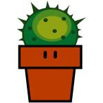 Cactusdesign