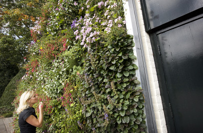 LivePanel living wall system