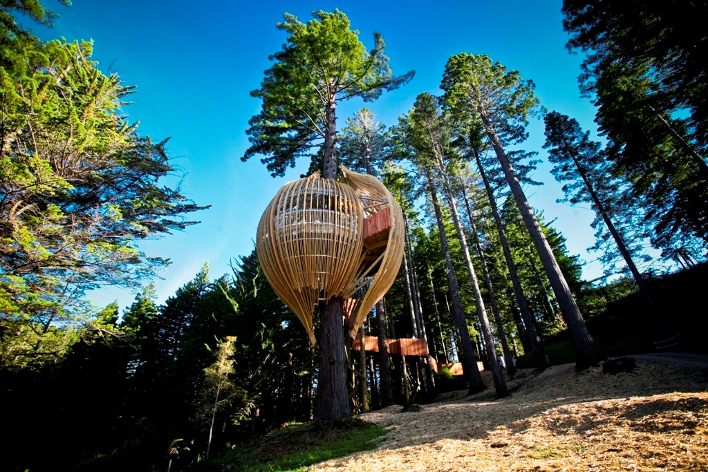 Treehouse Restaurant Inspired By Nature