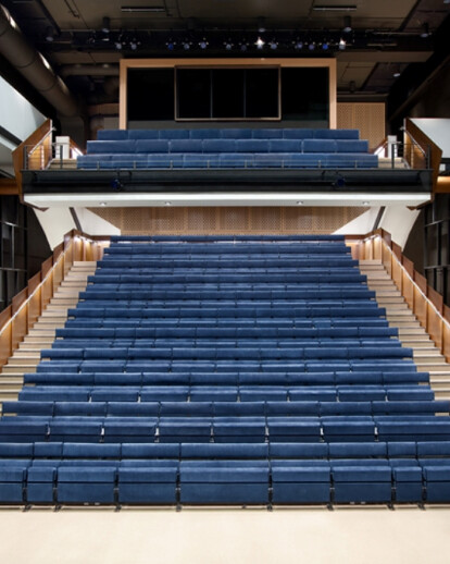 Baryshnikov Arts Center, Jerome Robbins Theater