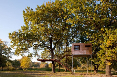 Treehouse Copper Cube