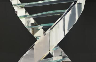 DNA Line
