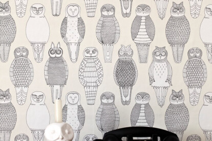 Owls of the British Isles
