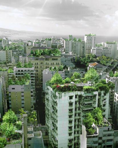 Beirut Wonder Forest