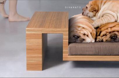 DIVANATO - Petsmood Collection