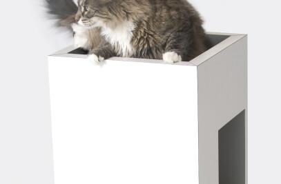 INTELLATO - Petsmood Collection