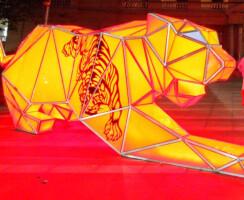 Barrisol Tigers in Sydney