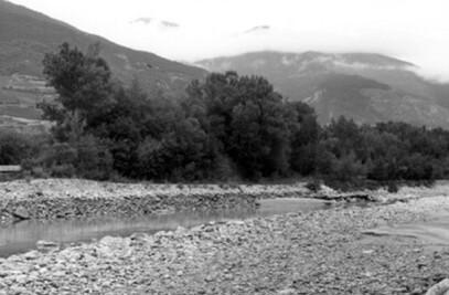 Passerelle du Rhône – Salgesh (Suisse)