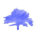Blue Mountain Design Studio