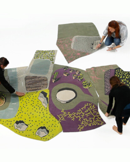 The Non-Flying Carpet