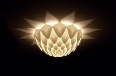 Dahlia Sconce Light D32