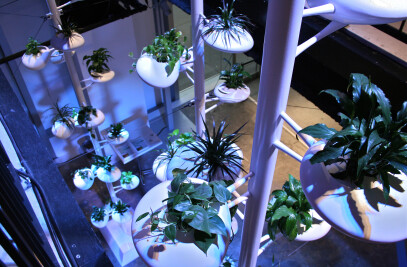 Vertical Garden Installation for BMW i Born Electric Tour, NYC