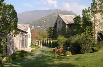 Ticino's vineyard