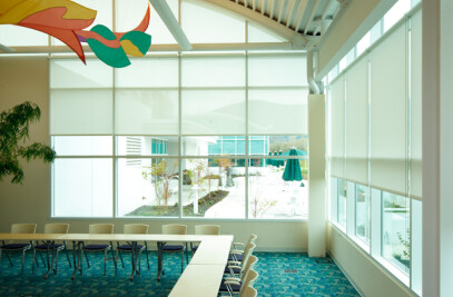Roller Shades FR by Hunter Douglas Contract