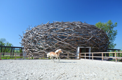 The Stork Nest Farm