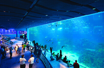 Resorts World Sentosa West Zone -An Aquatic-themed
