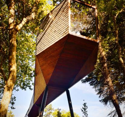 Tree Snake Houses