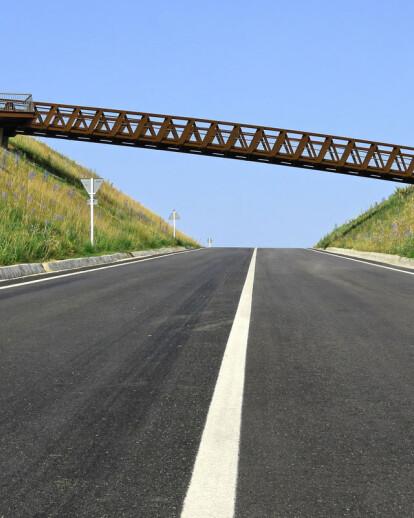 Sant Pere Sacarrera Footbridge