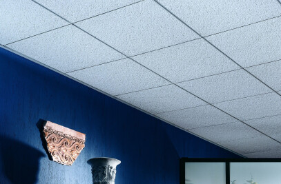 Frost Acoustical Ceiling Panels
