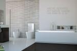 Bathrom Clean wengue