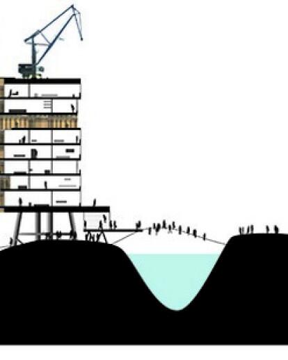 Water Shore Habitat