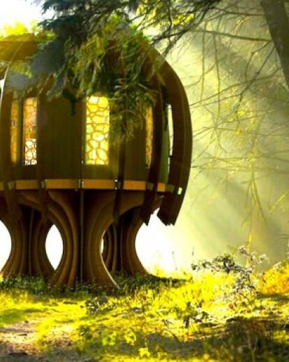 The Quiet Treehouse