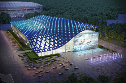 Project of reconstruction of swimming pool of the Luzhniki Olympic Complex, Moscow