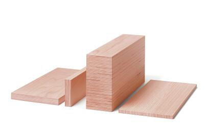 BauBuche Panel