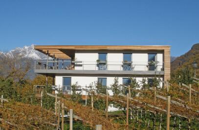 Postal House - Between vineyards and woods
