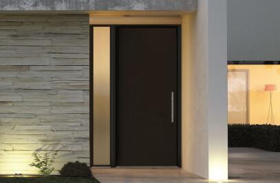 Brand new door panel