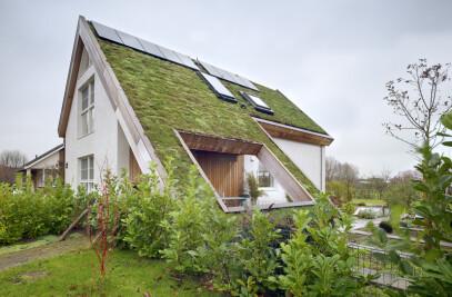 LIVING GREEN – FAMILY HOME