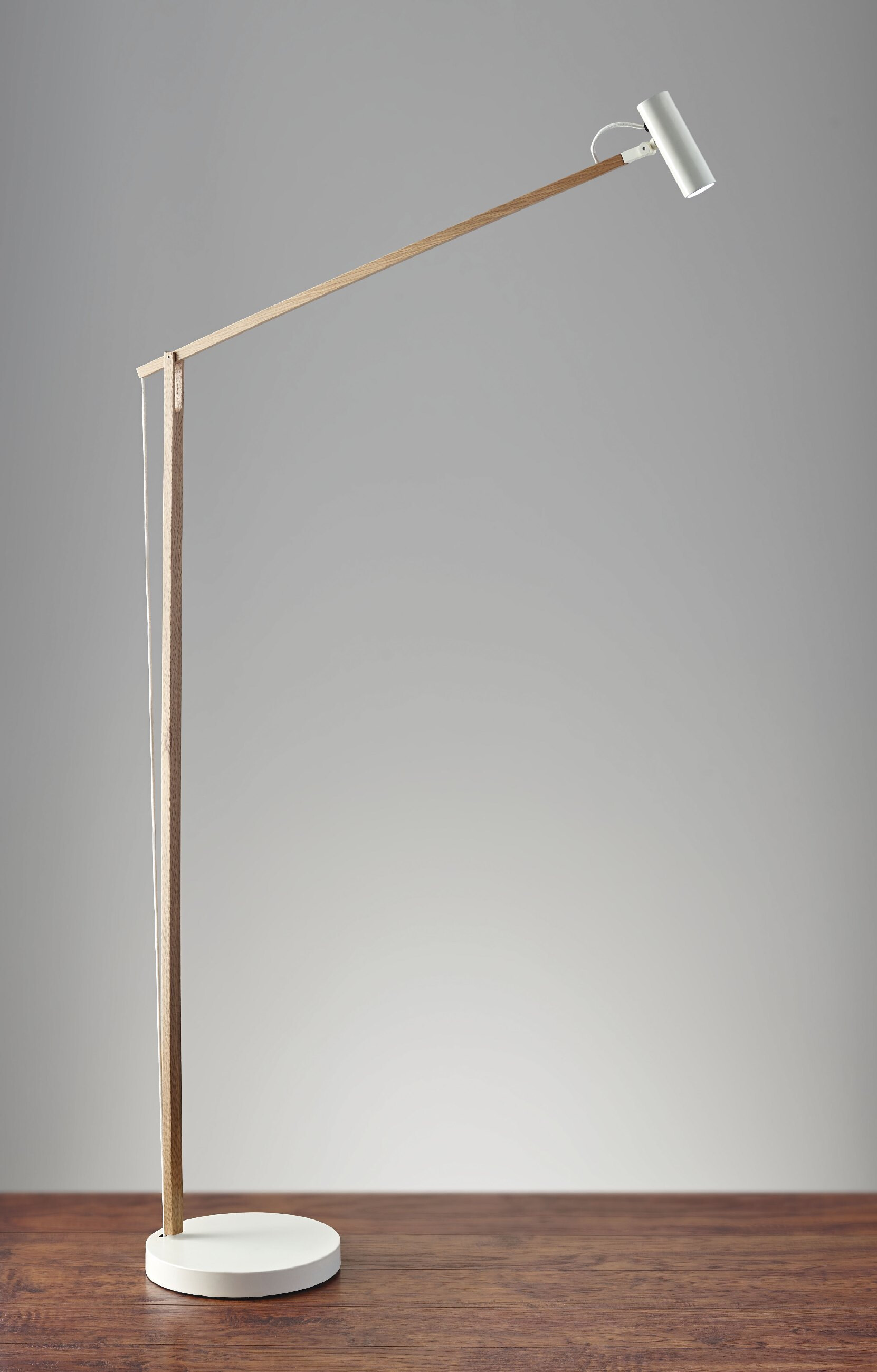 AD9101-12 Crane LED Floor Lamp