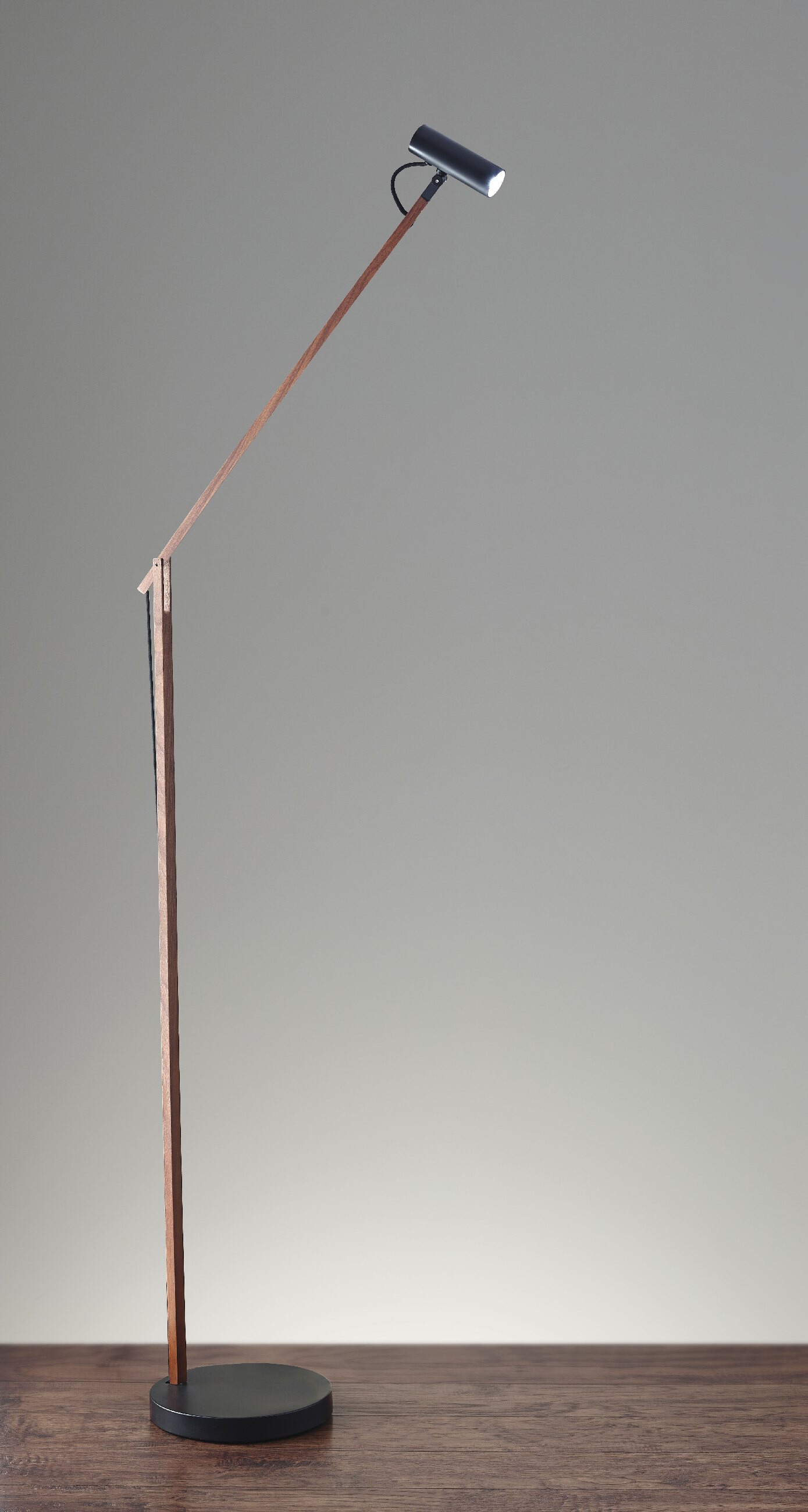 AD9101-15 Crane LED Floor Lamp