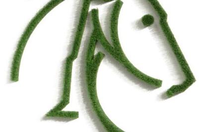 Bilder-Aus-Gras