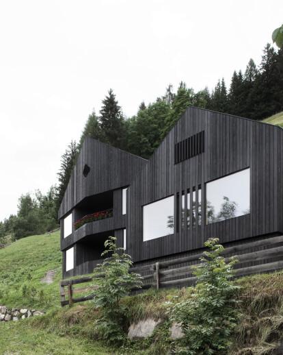 Chalet & alpine domicile - LA PEDEVILLA