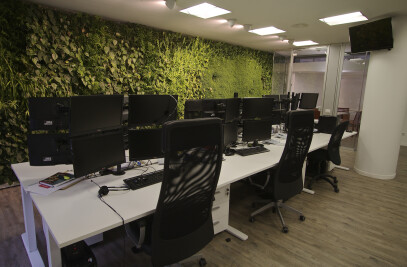 Office - indoor vertical garden