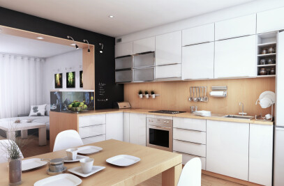 Interior design for kitchen and day room
