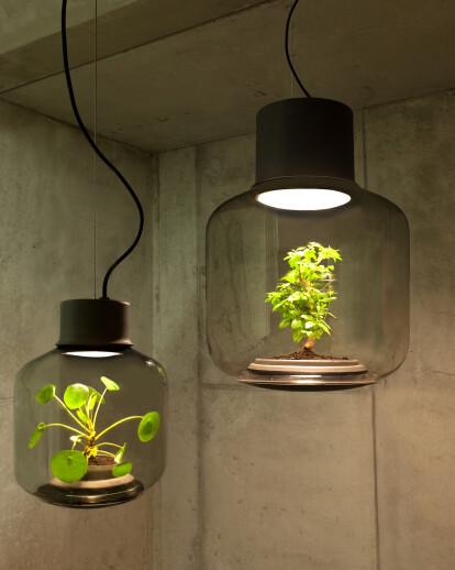 Mygdal plantlamp