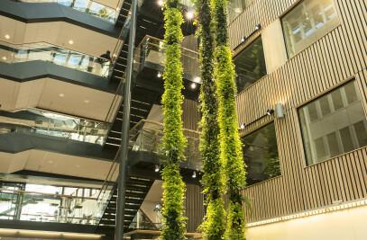 Plantwire, hanging garden