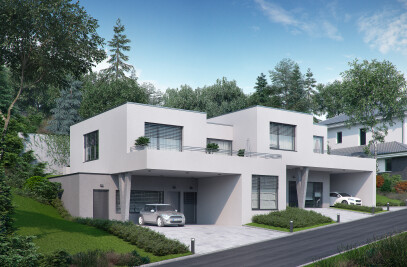 HOUSE IN WALDING, AUSTRIA