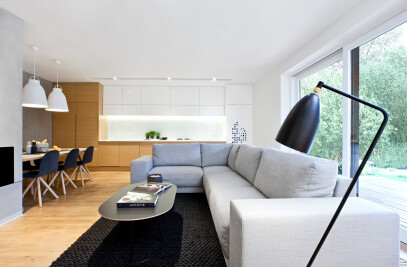 PERFORATED HOUSE INTERIOR
