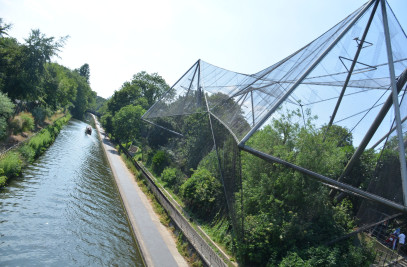 Snowdon Aviary at  ZSL London Zoo