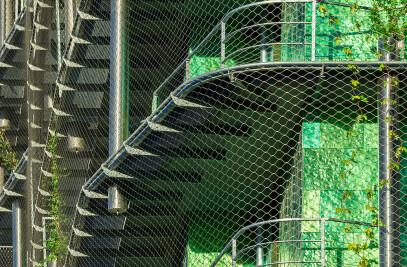 M6B2 Tower of Biodiversity
