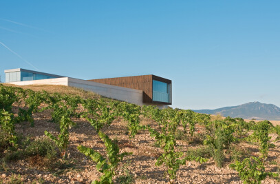 Bodega Tandem / Tandem winery