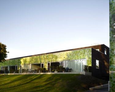 Green-skinned building