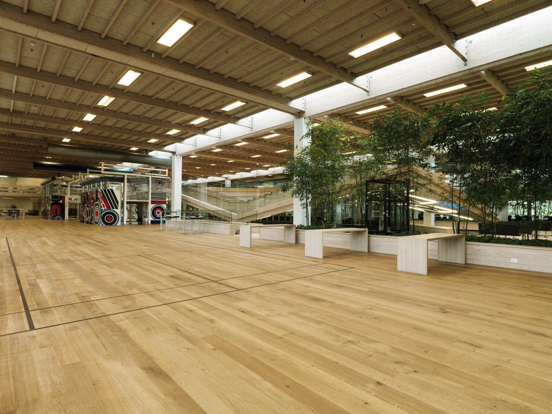 IBC Innovation Factory