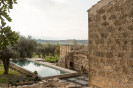 n'orma
