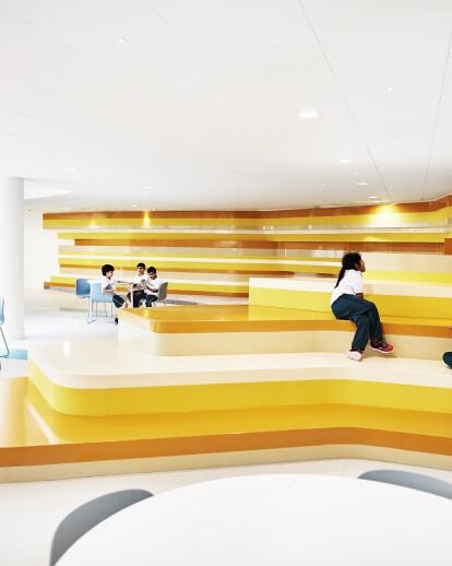 The Sheikh Zayed Private Academy