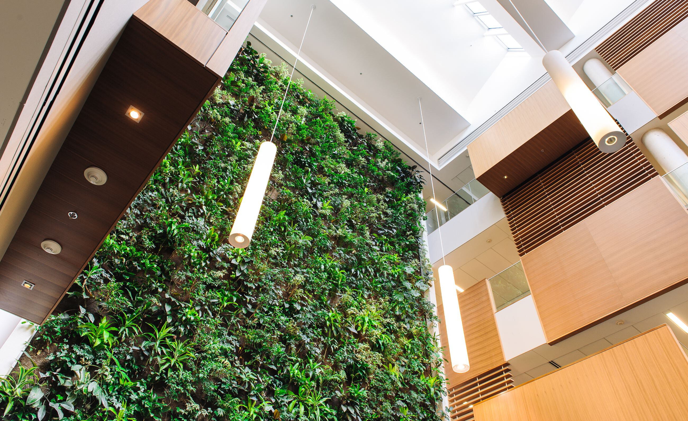 Higher education living wall biofilters